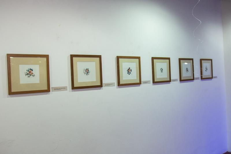 Exposicao Circuns Pectos por Isaac Furtado