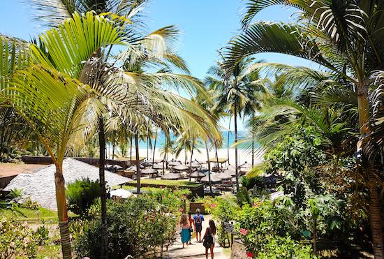Réveillon Nº1 promete movimentar o litoral da Bahia. Confira as atrações!