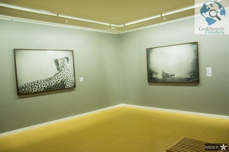 Exposição Luz e Sombra de Christian Cravo (