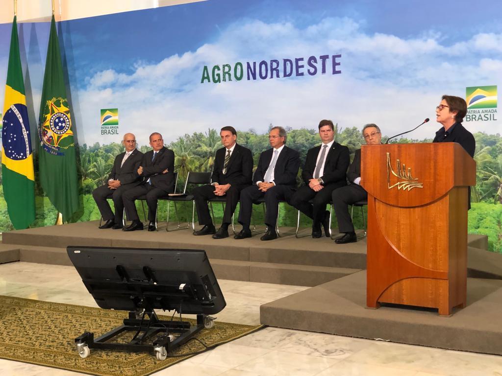 Presidente Jair Bolsonaro encabeça o lançamento