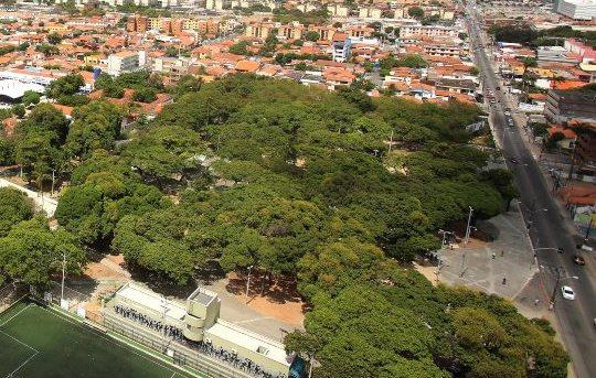 Prefeitura de Fortaleza anuncia revitalização de lagoas e parques