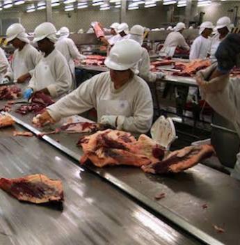 JBS fecha acordo bilionário de exportação com grupo chinês WH