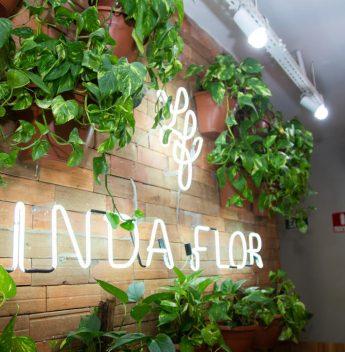 Casa Linda Flor retoma horário integral de funcionamento com protocolos de segurança