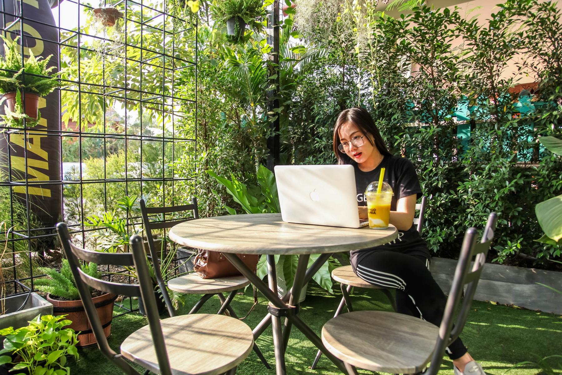Especialista entrega as dicas para transformar sua casa com a tendência Urban Jungle