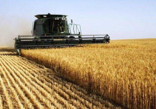 Ceará Global debate a revolução do agronegócio no Estado nesta quarta-feira
