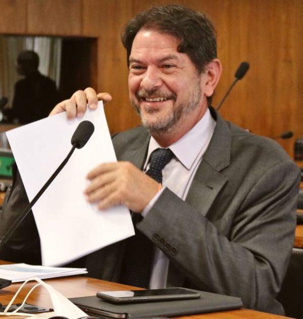 Cid Gomes se destaca no Senado e diz que Congresso foi ágil na aprovação de medidas de enfrentamento à pandemia