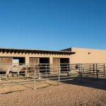 Tom Ford Ranch 6