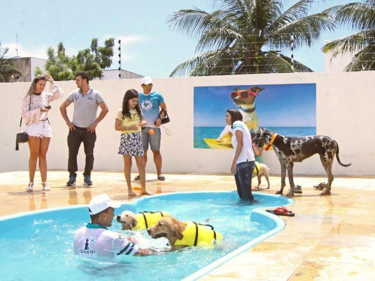 Empresa cearense lança aplicativo voltado para os cuidados com os pets