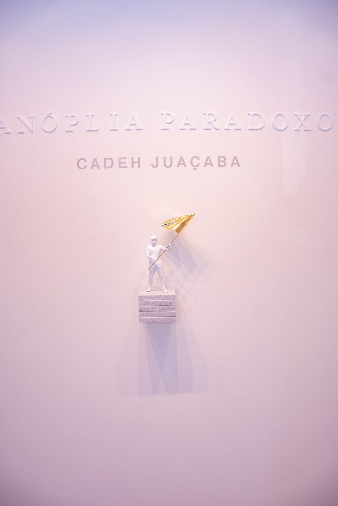 Exposição Panóplia Paradoxo Por Cadeh Juaçaba (17)