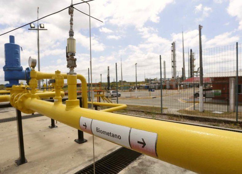 Governo do Ceará diversifica sua matriz energética e reforça o desenvolvimento
