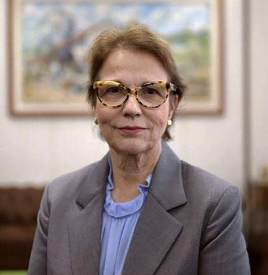 Ministra diz que Brasil pode ser maior player global para investimentos verdes