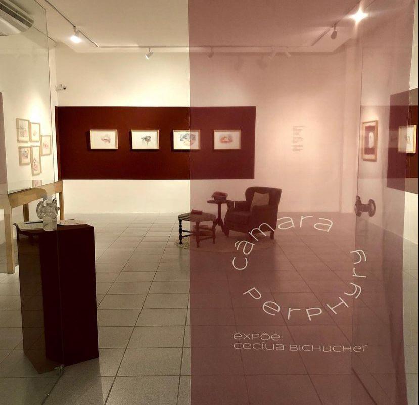 Obras de Cecília Bichucher seguem em exposição no MAUC até o dia 10 de setembro