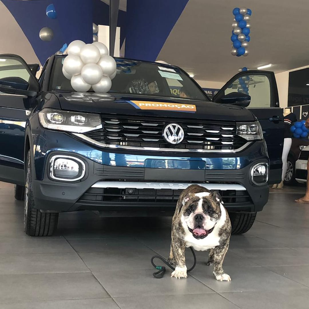 Acompanhados, pets também tem vez na Nacional Volkswagen
